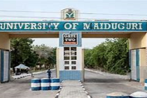 photo of maiduguri university